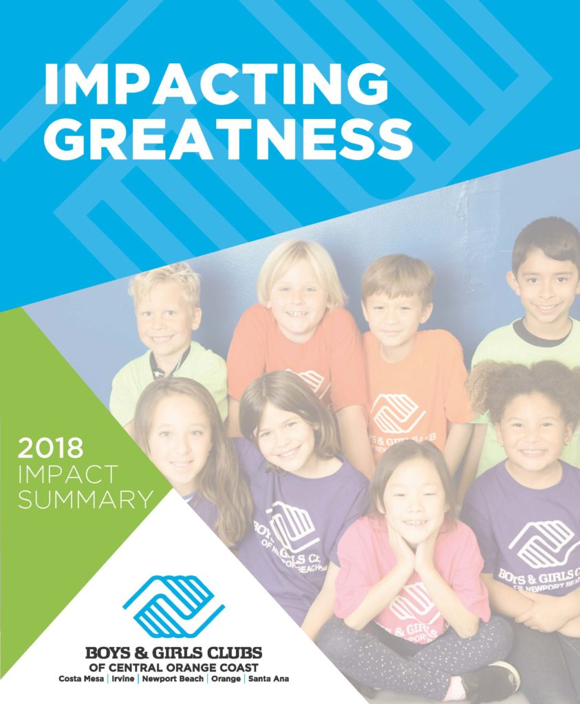 2018 Impact Report cover